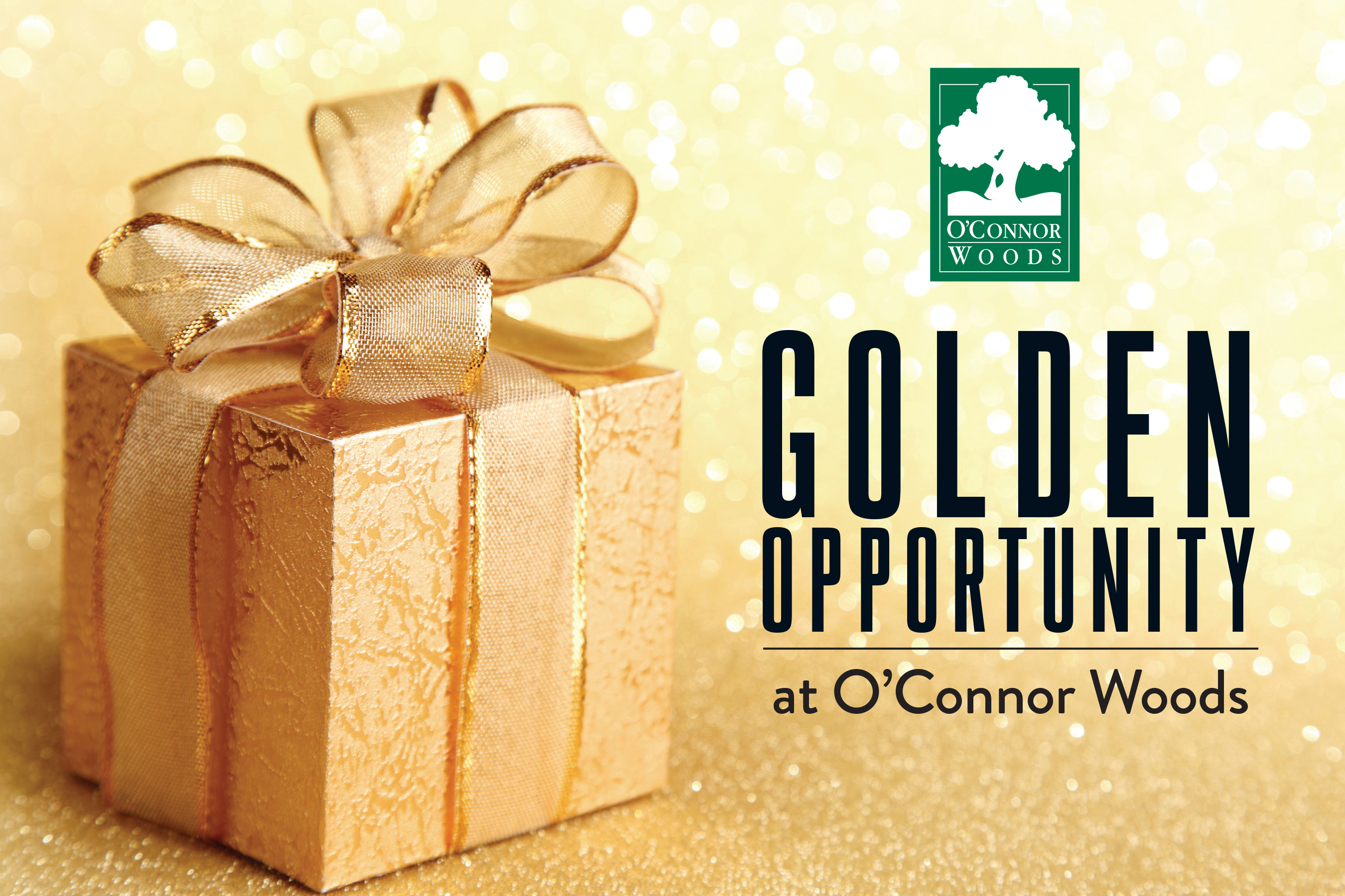 O'Connor Woods Golden Opportunity